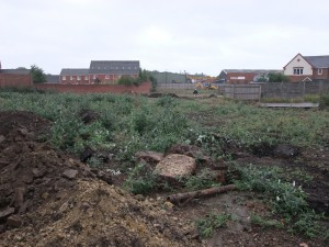 Site Preparation for 25 New Homes in Willenhall, Walsall